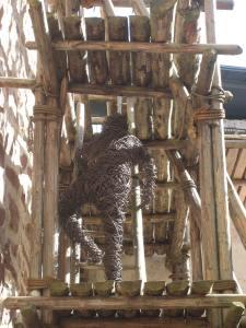 Tämä kaveri on vissiin kiivennyt tikkaita jo jonkin aikaa, on vähän päässeet paikat kuivahtamaan.